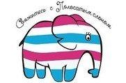 Полосатый Слон на Фестивальной - Частный детский сад