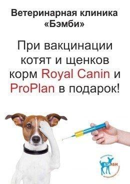 При вакцинации котят и щенков корм в подарок