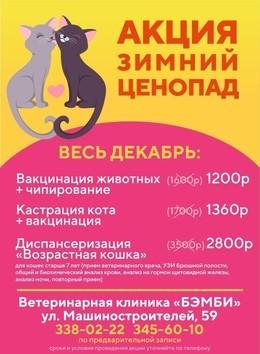 """Акция """"Зимний Ценопад""""!"""