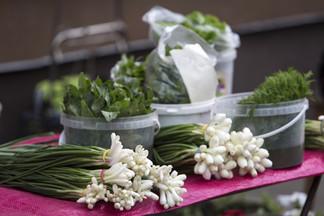 В Екатеринбурге появится три новых сельскохозяйственных рынка