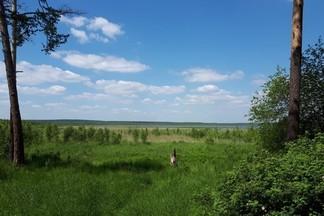 Что мы знаем об озере Шувакиш?