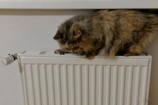 Жители семи многоэтажек на Уралмаше вчера остались без тепла и горячей воды из-за аварии