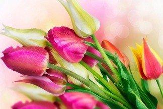 """Готовимся к 8 марта: """"Канон-Т"""" на Эльмаше предлагает красивые цветы по выгодным ценам"""
