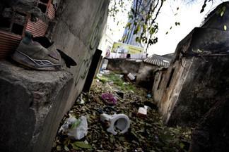 В Екатеринбурге будут судить пару живодеров, расправившихся с бездомным псом