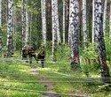Военно-спортивный праздник, посвященный дню ВДВ, фото № 2