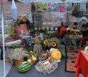 Выставка – ярмарка «Праздник урожая», фото № 6