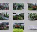 Выставка – ярмарка «Праздник урожая», фото № 3