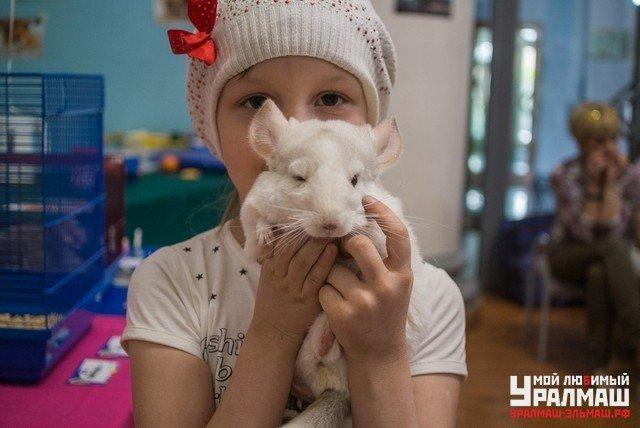 """Выставка декоративных домашних животных """"Хвостатая радуга 2016"""", фото № 1"""