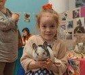 """Выставка декоративных домашних животных """"Хвостатая радуга 2016"""", фото № 38"""