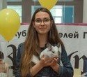 """Выставка декоративных домашних животных """"Хвостатая радуга 2016"""", фото № 30"""