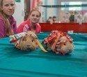 """Выставка декоративных домашних животных """"Хвостатая радуга 2016"""", фото № 48"""
