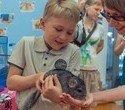 """Выставка декоративных домашних животных """"Хвостатая радуга 2016"""", фото № 12"""