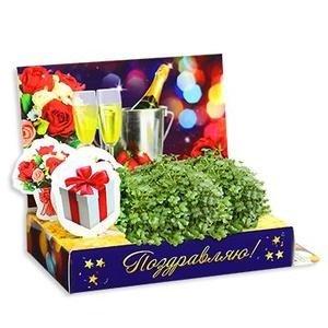 ТЦ Орджоникидзевский Fix Price Подарочный набор для выращивания - фото 2
