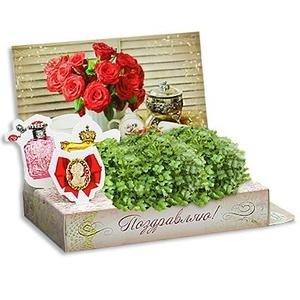 ТЦ Орджоникидзевский Fix Price Подарочный набор для выращивания - фото 3