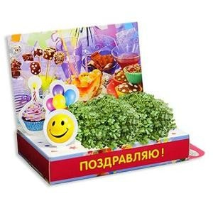 ТЦ Орджоникидзевский Fix Price Подарочный набор для выращивания - фото 1